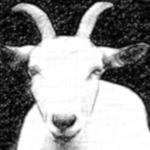 Scape-Goat | Indraganti Narasimha Murthy